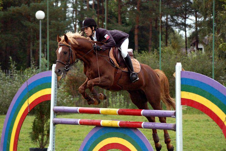 Miłośnicy koni, Ulanów zaprasza na 3 maja