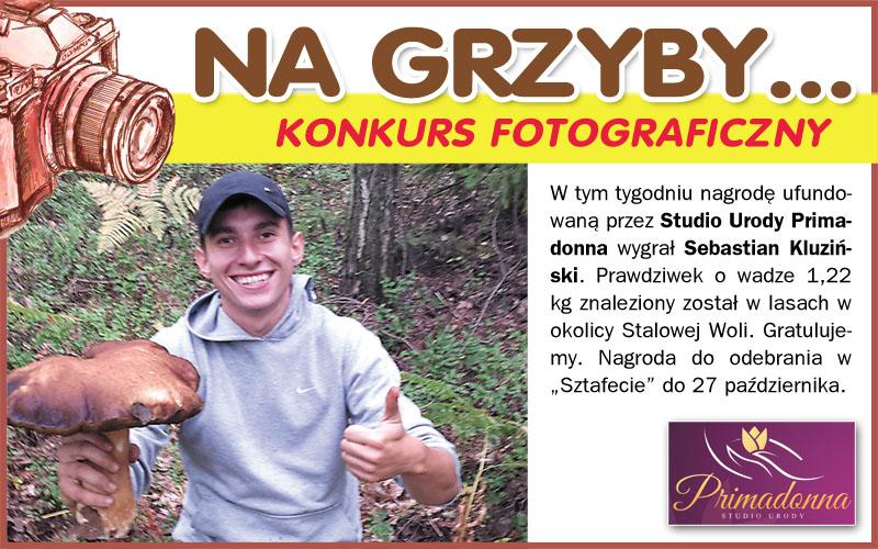 Na Grzyby... - nowy konkurs fotograficzny