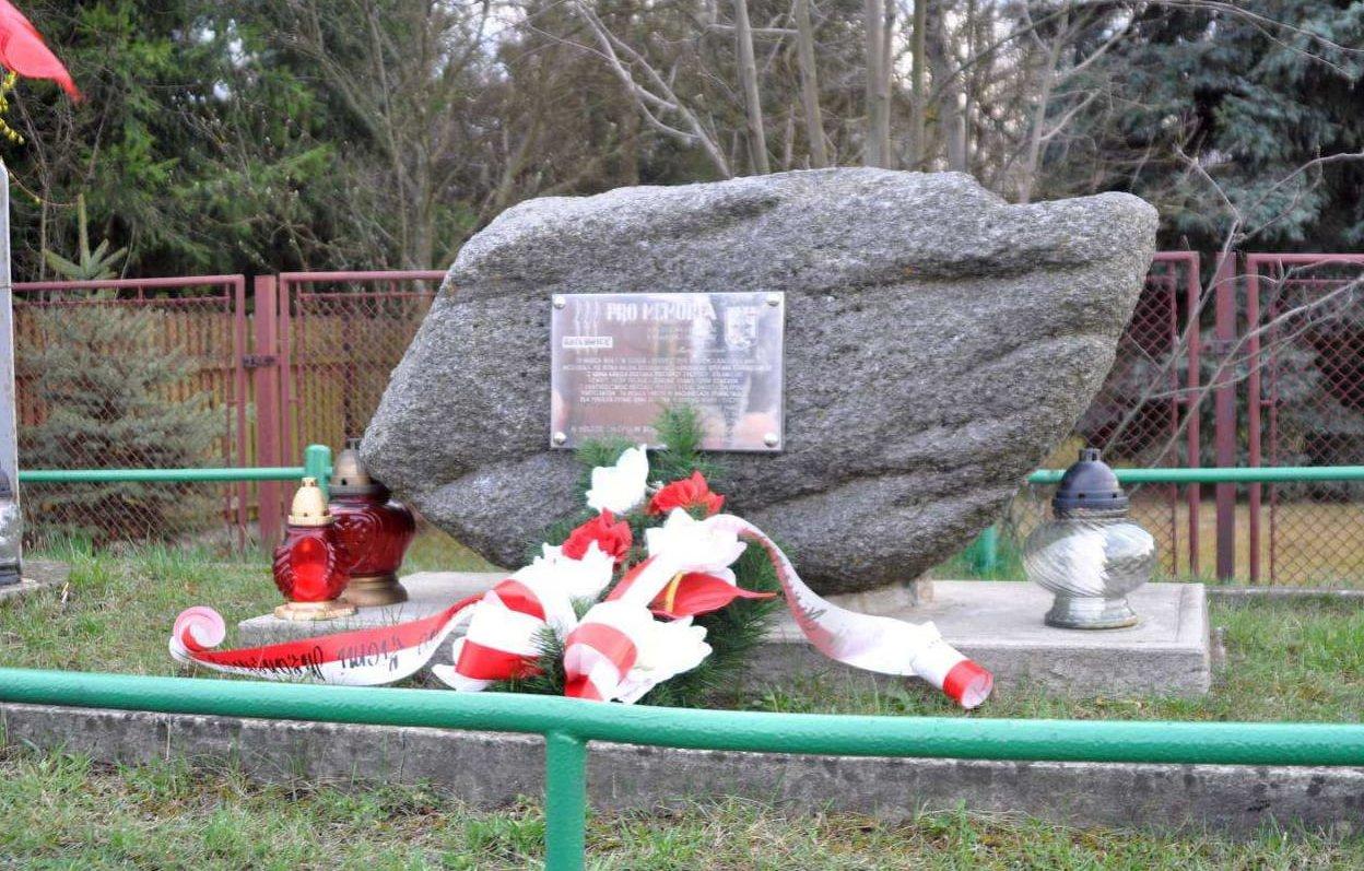 Uczczą pamięć poległych w bitwie pod Niskiem