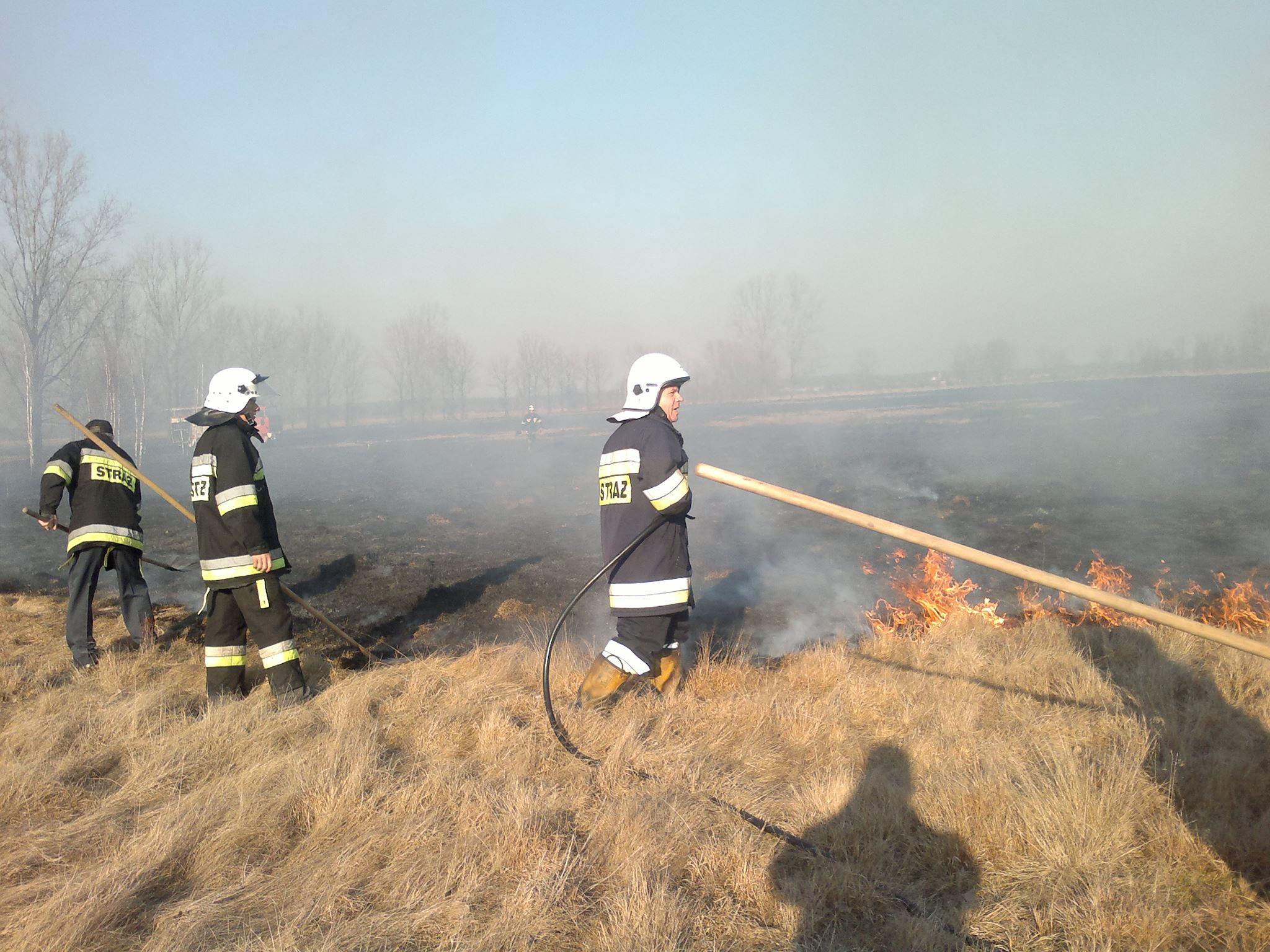 Strażacy apelują – Nie wypalajmy traw!