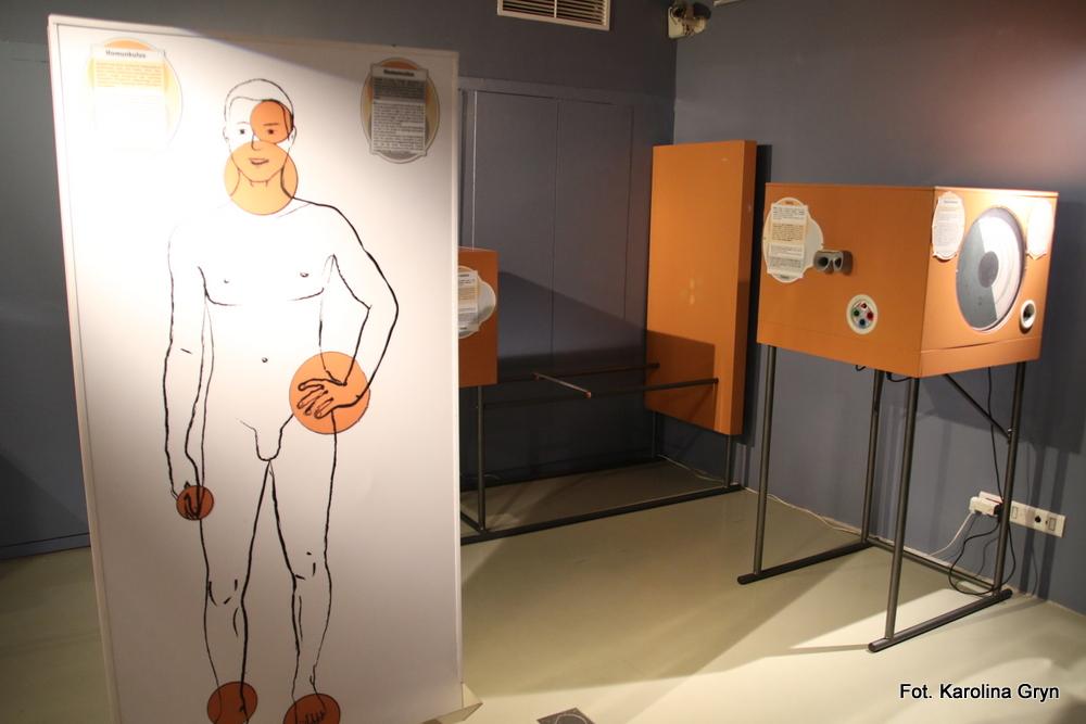 Zmysły człowieka na wystawie interaktywnej